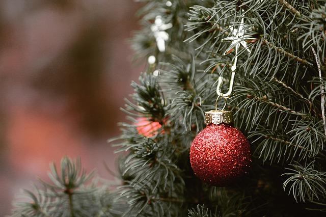 Y aura-t-il un sapin à Noël?